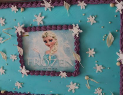 Frozen Class Birthday Party & Open Day